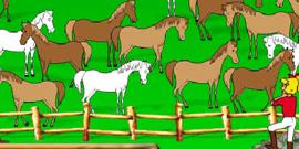 trouve le bon cheval